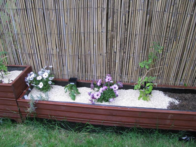 une nouvelle saison au potager chez budibulle page 36 au jardin forum de jardinage. Black Bedroom Furniture Sets. Home Design Ideas